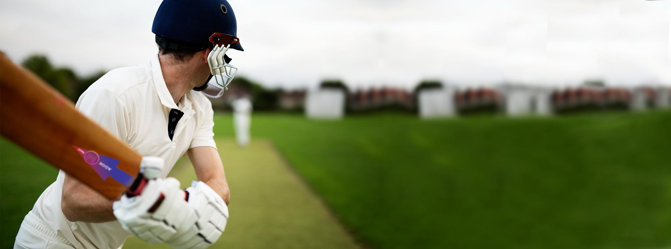 AggieNext Cricket Bat Banner